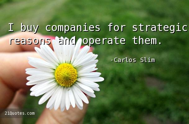 I buy companies for strategic reasons and operate them.