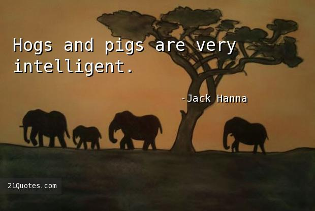 Hogs and pigs are very intelligent.