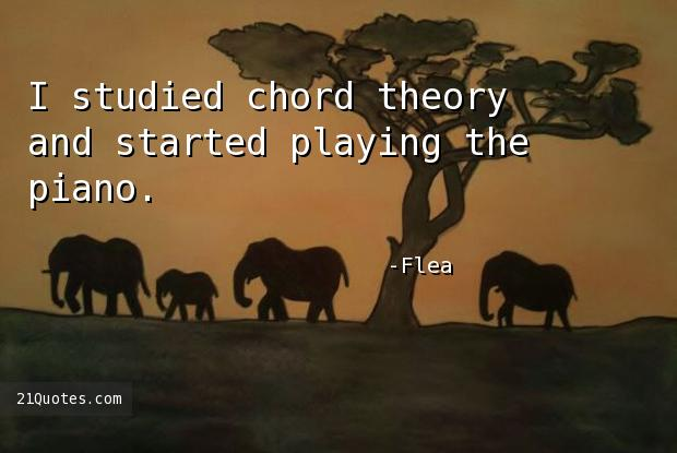 I studied chord theory and started playing the piano.