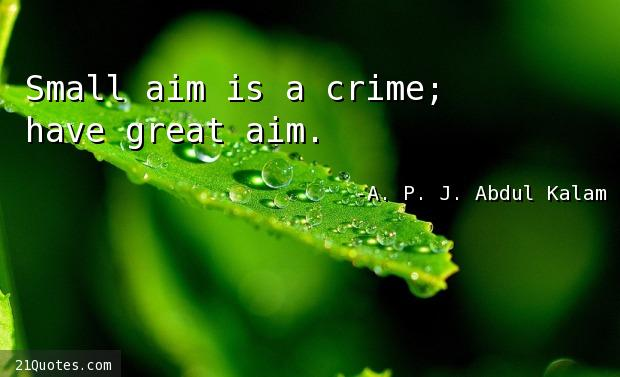 Small aim is a crime; have great aim.