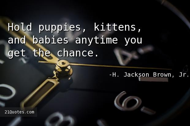 Hold puppies, kittens, and babies anytime you get the chance.