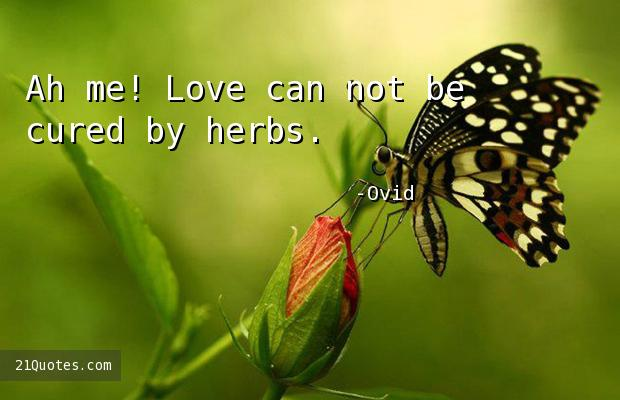 Ah me! Love can not be cured by herbs.