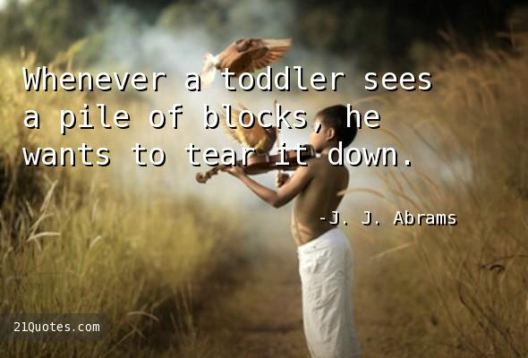 Whenever a toddler sees a pile of blocks, he wants to tear it down.